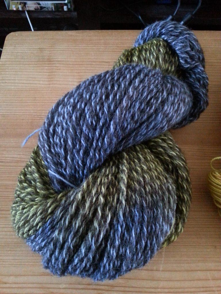 Zwartbles bfl jacob sock