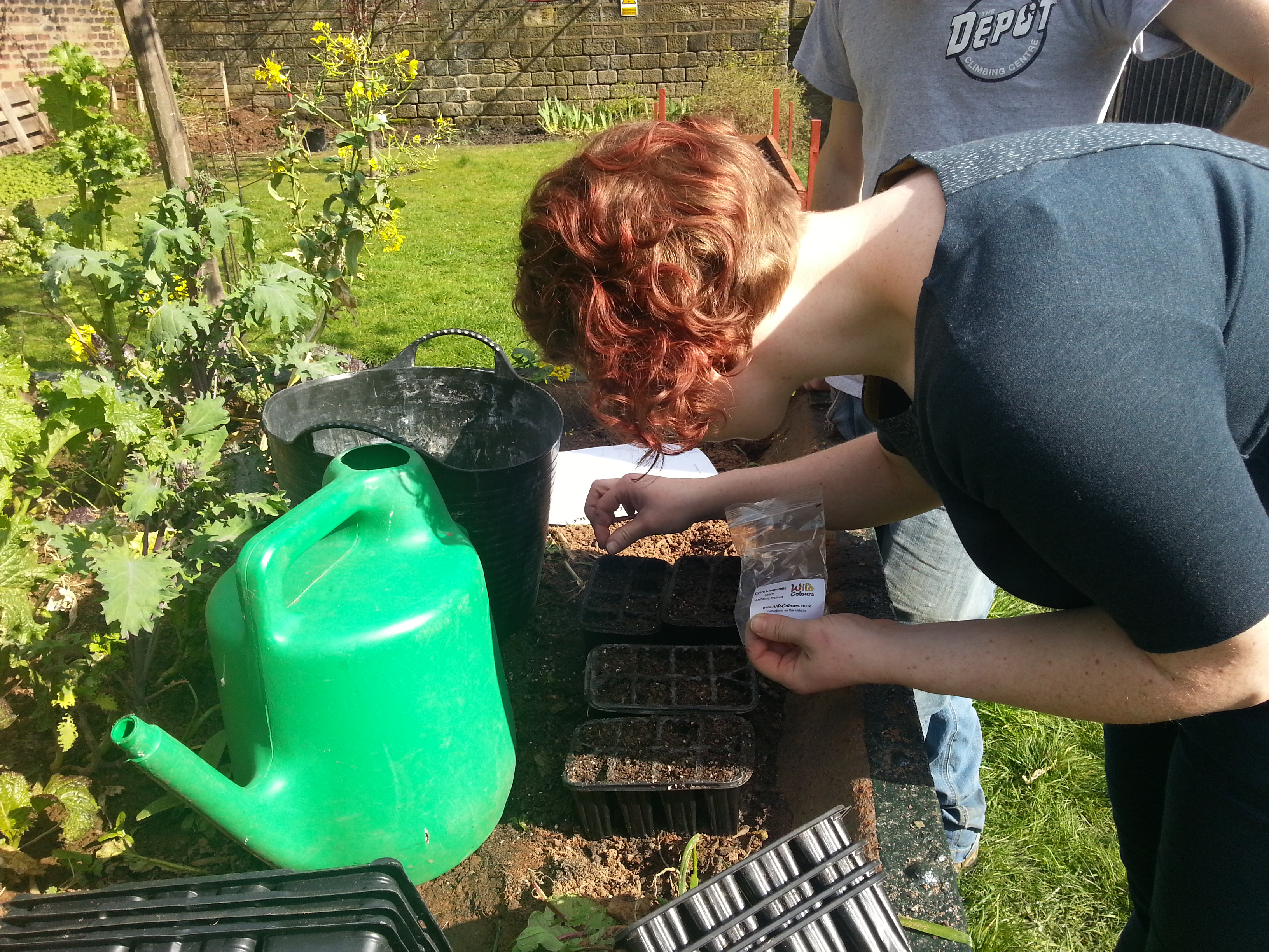 Armley Mills - Community Dye Garden with Debbie Tomkies of Making Futures