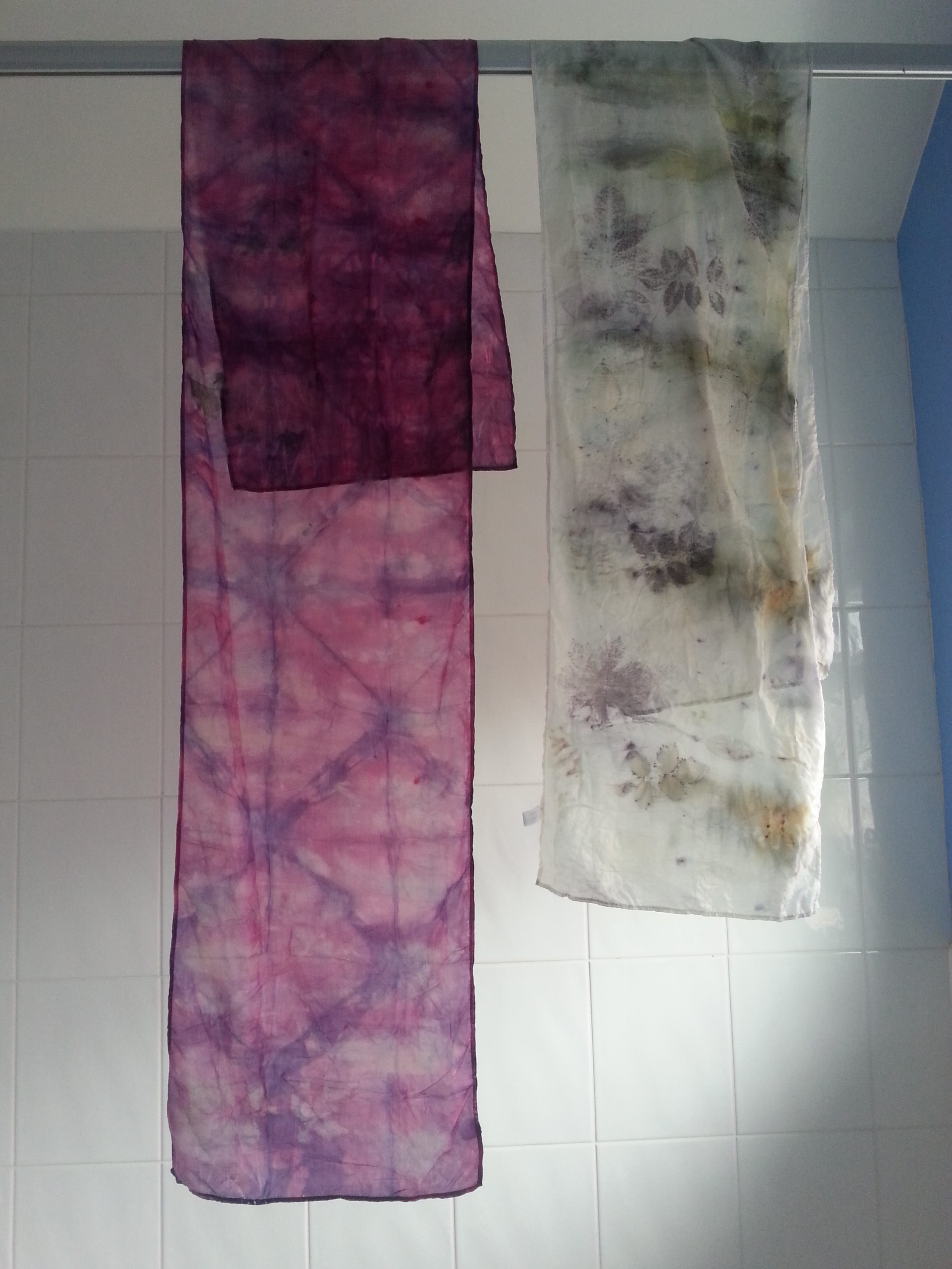 Pic-torial for Eco-printing and Natural Dyestuffs Kit by Debbie Tomkies of DT Craft and Design - cochineal